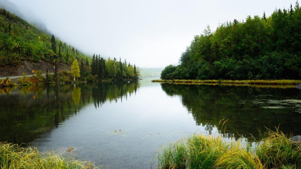 アリゲーターガー生息地のイメージ